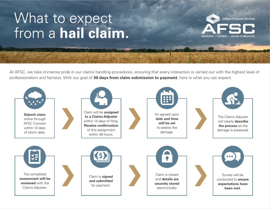 A diagram showing the hail claim process